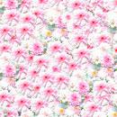 花のフリー(無料)背景、写真素材(ダウンロード06)