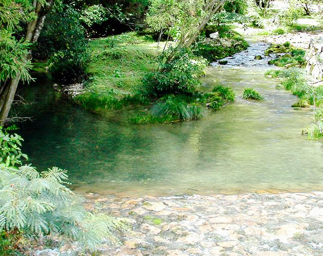 自然・風景のフリー背景素材、写真画像(ダウンロード02)