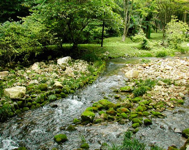 自然・風景のフリー背景素材、写真画像(ダウンロード09)