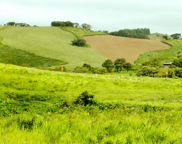 自然・風景のフリー背景素材、写真画像(ダウンロード14)