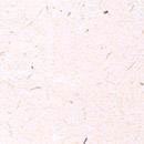 和紙のフリー背景写真画像(ダウンロード09)