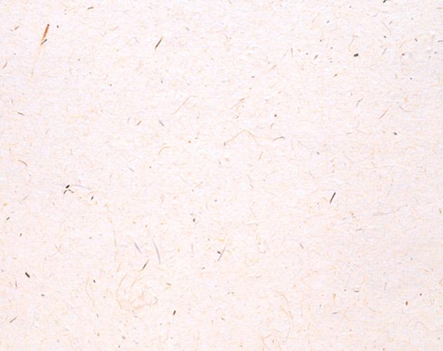 和紙-09(フリー素材)